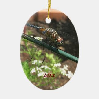 Libellen-Geschenke Ovales Keramik Ornament
