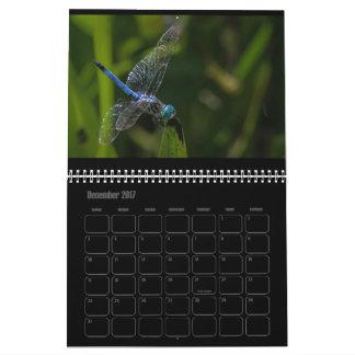 Libellen-Kalender 2017 Kalender