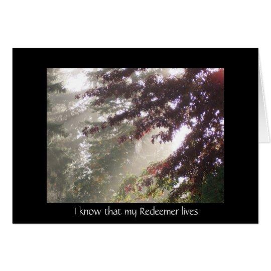 Licht durch Pflaumenbaum-Beileidskarte Karte