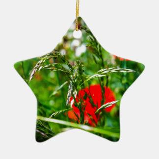 Lichtspiel der Natur Keramik Ornament