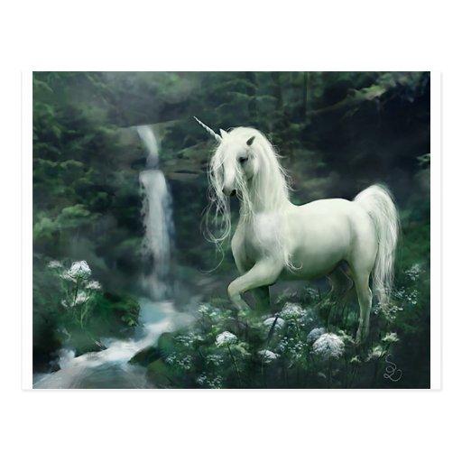 licorne-imaginaire carte postale