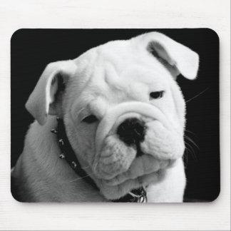 Liebe-englisches Bulldoggen-Welpen-HundeFoto Mauspads
