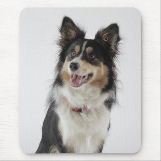 Liebe-Grenzcollie-Welpen-Hund Mousepad