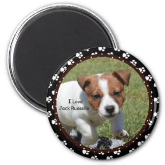 Liebe I Jack Russells Magnet