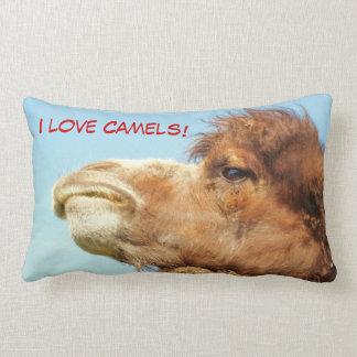 Liebe I Kamele - Kissen