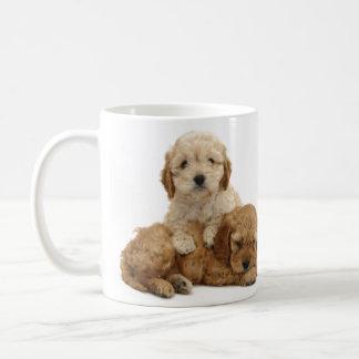 Liebe I meine cockapoo Tasse! Kaffeetasse