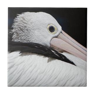 Lieber Pelican Fliese