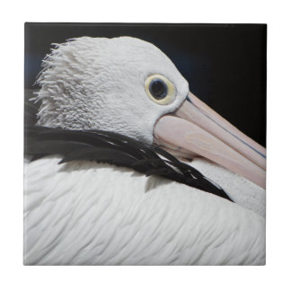 Lieber Pelican Kleine Quadratische Fliese