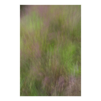 Lila blühendes Gras abstrakt Poster