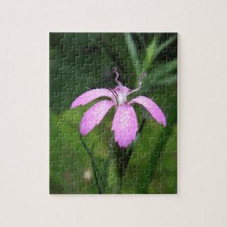 Lila Blume Puzzles