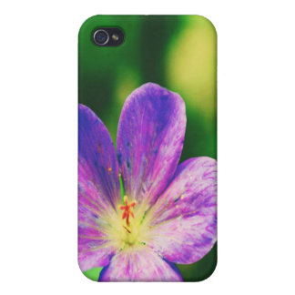 Lila Blumen iPhone 4 Case