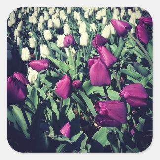 Lila Blumen Quadratischer Aufkleber