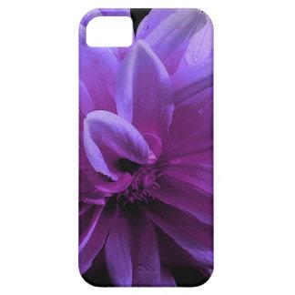 Lila Blumentelefonkasten Etui Fürs iPhone 5
