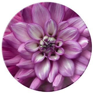 Lila Dahlie-Blumendruck-Porzellanplatte Teller Aus Porzellan