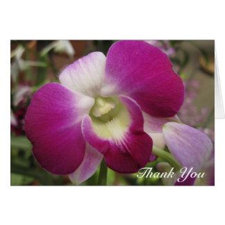 Lila Dendrobium-Orchidee danken Ihnen zu kardieren Karte