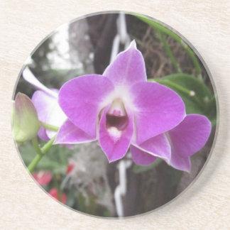 Lila Dendrobium-Orchideen-Untersetzer Sandstein Untersetzer
