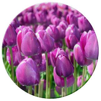 Lila Frühlingstulpedruck-Porzellanplatte Teller Aus Porzellan