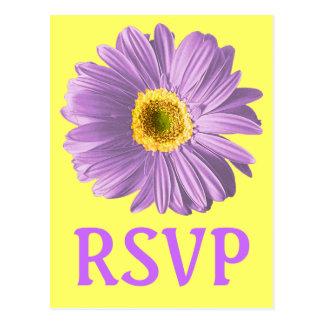 Lila Gänseblümchen-Blumen-UAWG oder Gewohnheit Postkarte