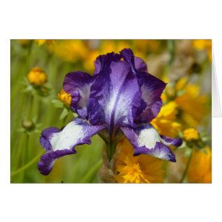 Lila Iris mit orange Blumen Karte