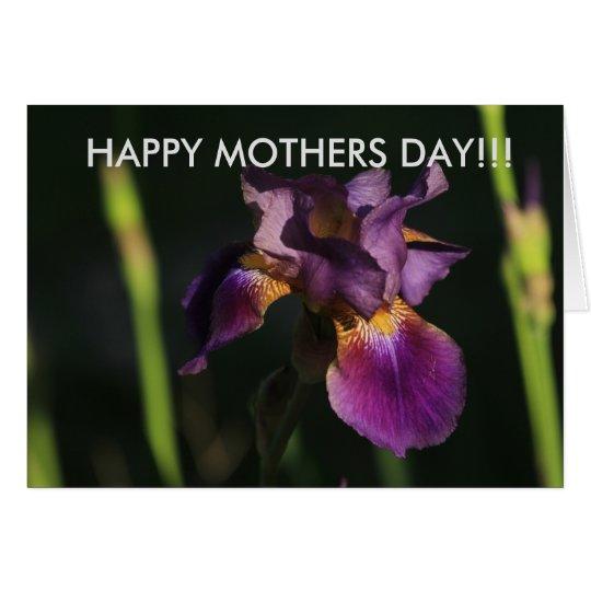 Lila Iris-Nahaufnahme-Mutter-Tageskarte Grußkarte