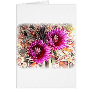 Lila Kaktus-Blüte Karte