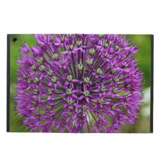Lila Lauch-Blume ipad Luftkasten