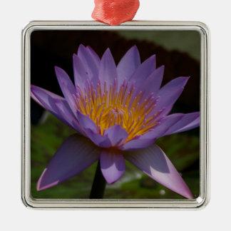 Lila Lotos-Wasserlilie Silbernes Ornament
