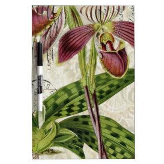 lila Orchidee des französischen botanischen Memoboard