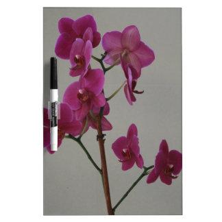 Lila Orchidee Trockenlöschtafel