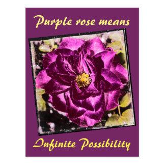 Lila Rose bedeutet unbegrenzte Postkarte