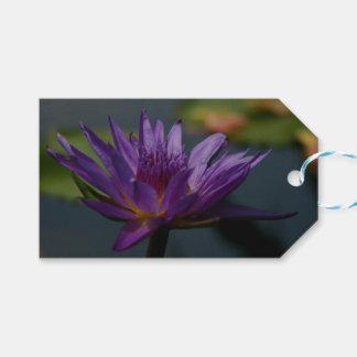 Lila Wasserlilie Geschenkanhänger