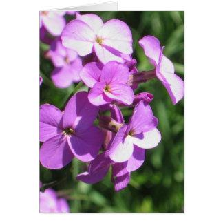 Lila Wildblumen-freier Raum Grußkarte