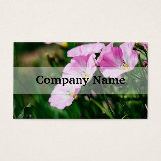 Lila Wildblumen in einer Sommersun-Fotografie Visitenkarte