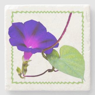 Lila Winden-Blumenphotographie herausgeschnitten Steinuntersetzer