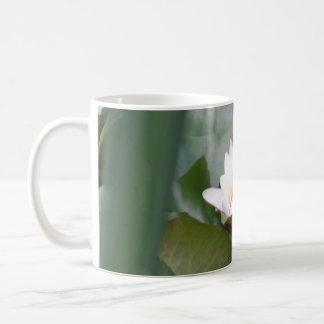 Lilie auf dem Teich Kaffeetasse