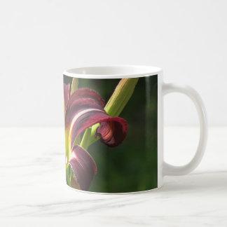 Lilie der Nacht - Taglilie Kaffeetasse