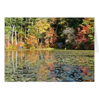 Lilien-Auflage-Bucht - Whitney-Teich Karte