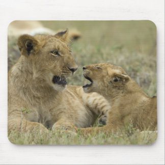 Lion Brothers Mousepads