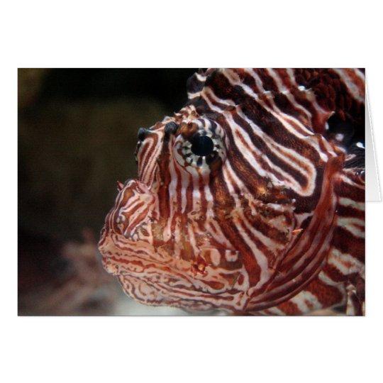 Lionfish Grußkarte