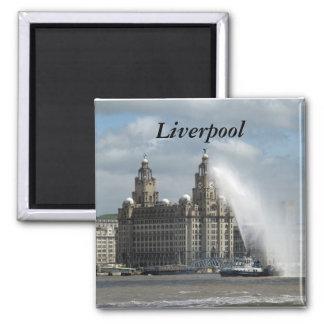 Liverpool Magnet Carré