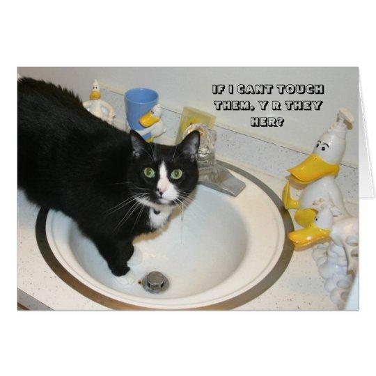 LOL Katzenkarte Karte