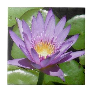 Lotos-Blume Kleine Quadratische Fliese