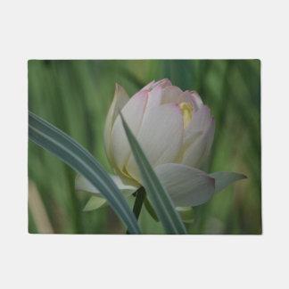 Lotos-Blume Türmatte