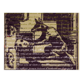 Loup ancien carte postale