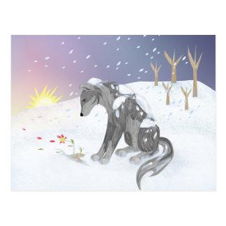Loup d'hiver carte postale