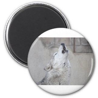 Loup d'hurlement magnet rond 8 cm
