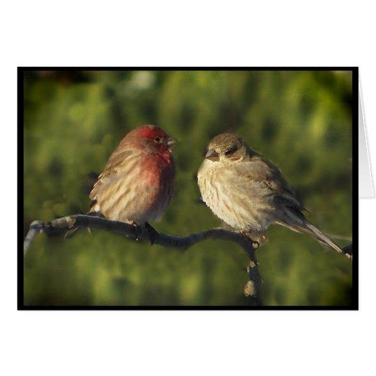 Lovebirds Grußkarte