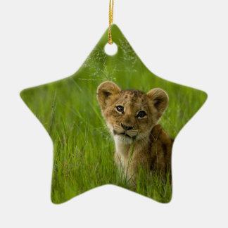 Löwe CUB im hohen Gras Keramik Ornament