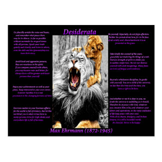Löwe CUB Postkarte