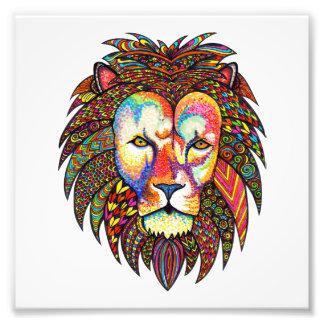 Löwe Photodruck